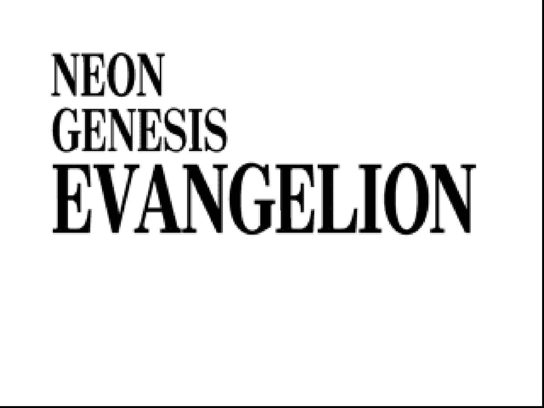neon genesis evangelion details