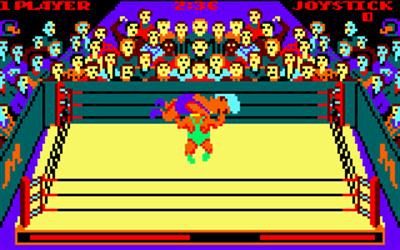 Rock 'n Wrestle - Screenshot - Gameplay
