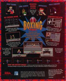 4D Sports Boxing - Box - Back