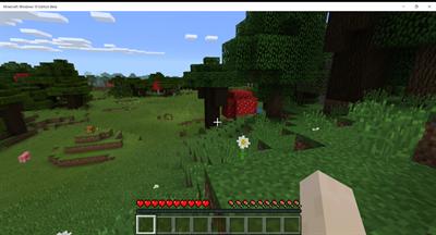 Minecraft: Windows 10 Edition - Screenshot - Gameplay
