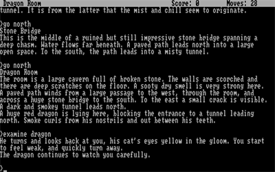 Zork II: The Wizard of Frobozz - Screenshot - Gameplay