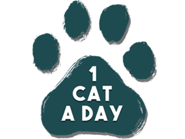 1 Cat a Day - Clear Logo