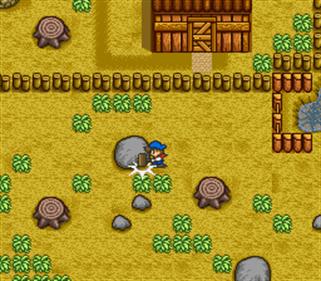Bokujou Monogatari - Screenshot - Gameplay