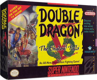 Double Dragon V: The Shadow Falls - Box - 3D