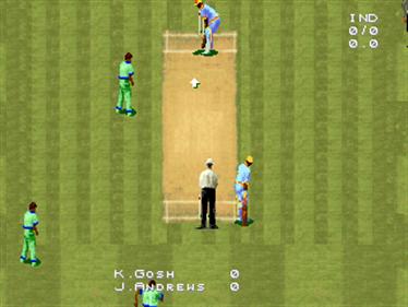 Cricket 96 - Screenshot - Gameplay