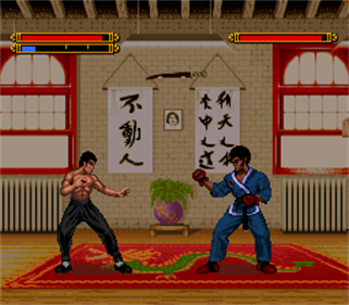 Dragon: The Bruce Lee Story - Screenshot - Gameplay