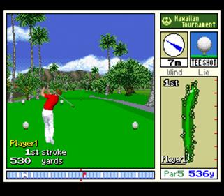New 3D Golf Simulation: Waialae no Kiseki - Screenshot - Gameplay