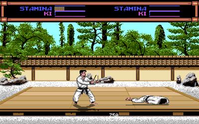 Budokan: The Martial Spirit - Screenshot - Gameplay