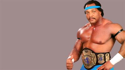 WCW SuperBrawl Wrestling - Fanart - Background
