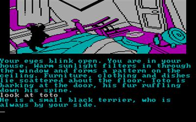 The Wizard of Oz - Screenshot - Gameplay