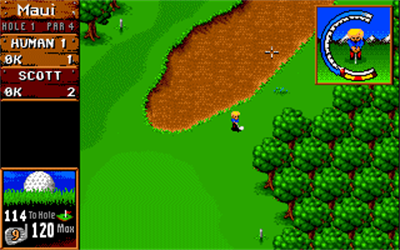 Sensible Golf - Screenshot - Gameplay