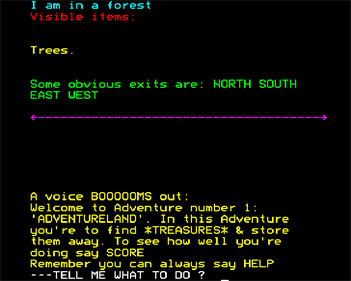 Adventureland - Screenshot - Gameplay