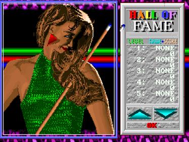 1994Pool+ - Screenshot - High Scores