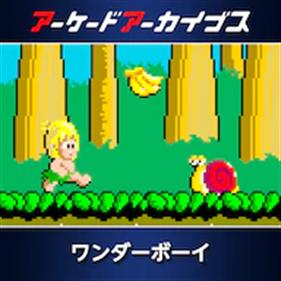 Arcade Archives: Wonder Boy