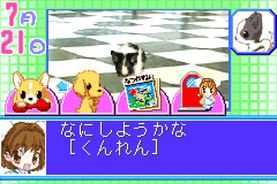 2001: Kawaii Pet Game Gallery 2 - Screenshot - Gameplay