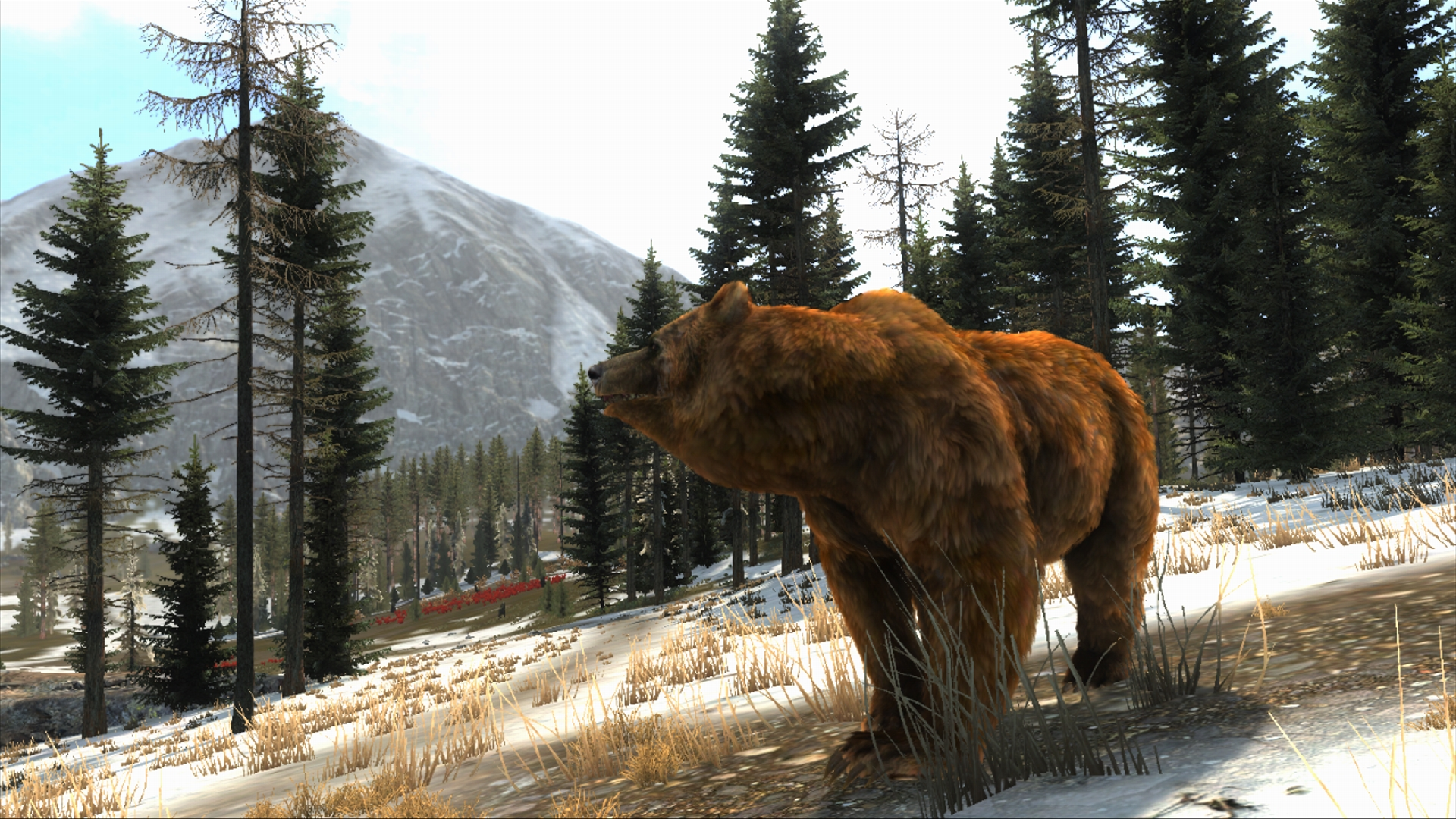 Cabela's Big Game Hunter: Pro Hunts PC Game Free Download ...